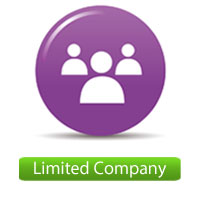 Limited-Company-Accounts
